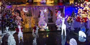 Winterkwartier-caroussel-lichtjestuin